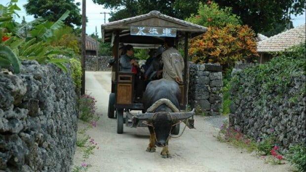 Taketomi-jima - ngôi làng nhỏ với những ngôi nhà truyền thống bằng gạch lát đỏ & tường san hô