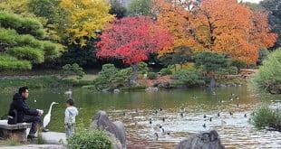 10 nơi đẹp tuyệt vời để tận hưởng mùa thu ở Nhật