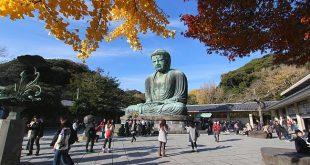 """Những Bức Ảnh Tuyệt Đẹp  Mùa Lá Đỏ 2016 """" Kamakura cuối thu """""""