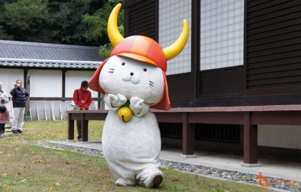 Hikonyan - Mèo thần tài nôi