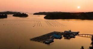 Khám phá Ise-Shima: thoát ra khỏi lối mòn ở Kansai