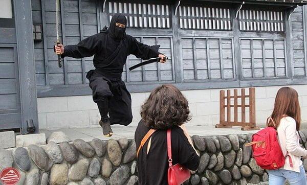 Ninja thời Edo