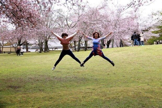 Khó đỡ. Tin từ Đài truyền hình Nhật: xuất hiện người bay trong lễ hội Sakura