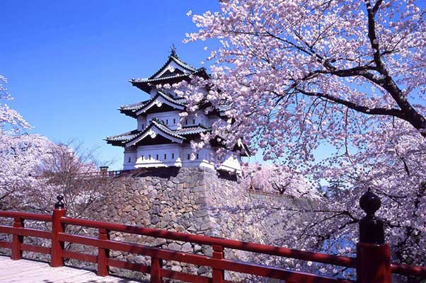 Cung điện Hoàng Gia Nhật được vây quanh bởi Hoa Anh Đào