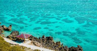 Những ý tưởng du lịch Nhật Bản tốt nhất vào mùa hè