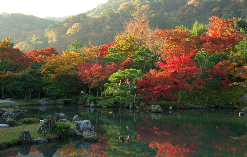 Chùa Tenryuji - Kyoto