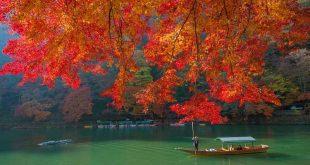 Dự báo lịch ngắm lá đỏ năm 2018 tại 10 điểm đẹp nhất Nhật bản
