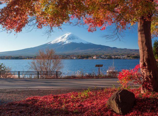 Phú sĩ mùa thu lá đỏ