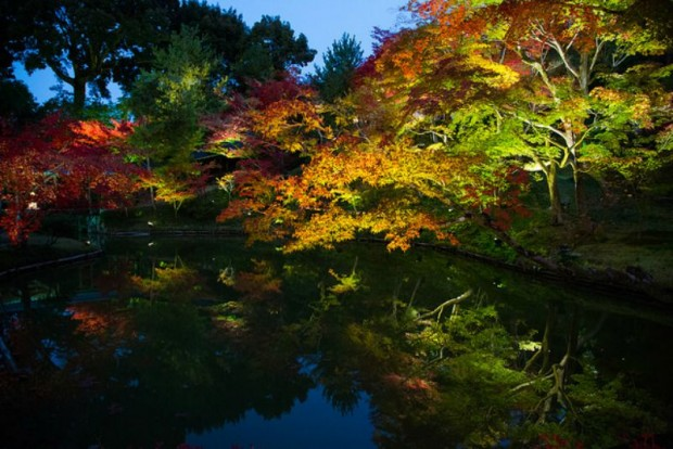 Kodaiji - Kyoto