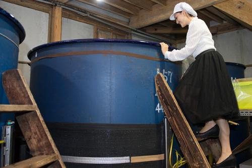 Thăm xưởng rượu Sake truyền thống