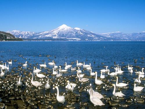 Núi Bandai và hồ Inawashiro ( Thị trấn Inawashiro)