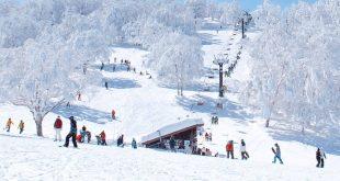 Những khu trượt tuyết nổi tiếng Nhật Bản – Mùa đông năm 2019