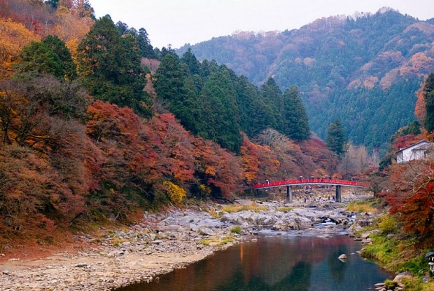 Thung lũng Korankei - Toyota