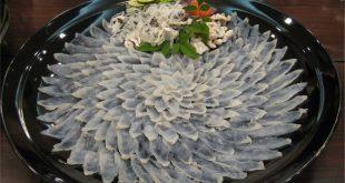 Cá nóc ( Fugu)- Món ăn triệu đô và cũng là một trong những loài cá độc nhất thế giới.