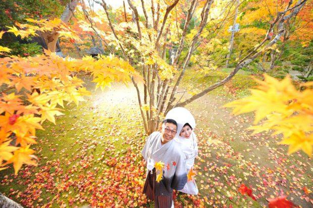 Ảnh cưới mùa thu Nhật Bản