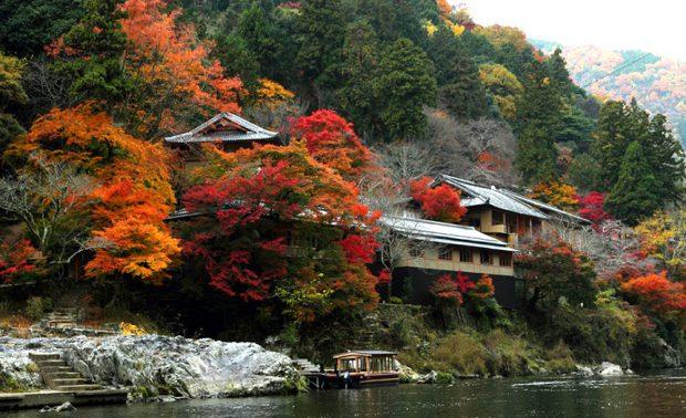 hozugawa_lá-đỏ_mùa-thu