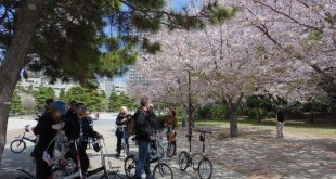 """Khám phá Tokyo xe đạp tour """"độc đáo Tokyo"""""""