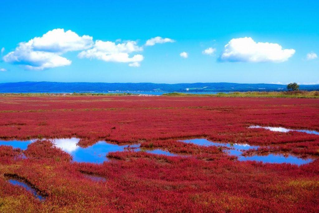 kinh nghiệm du lịch Hokkaido