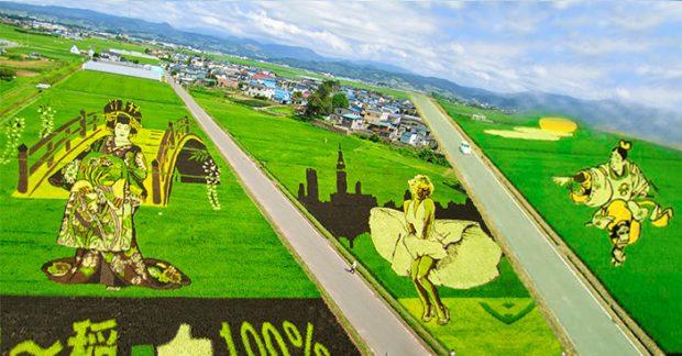 nghệ thuật Tanbo Nhật Bản