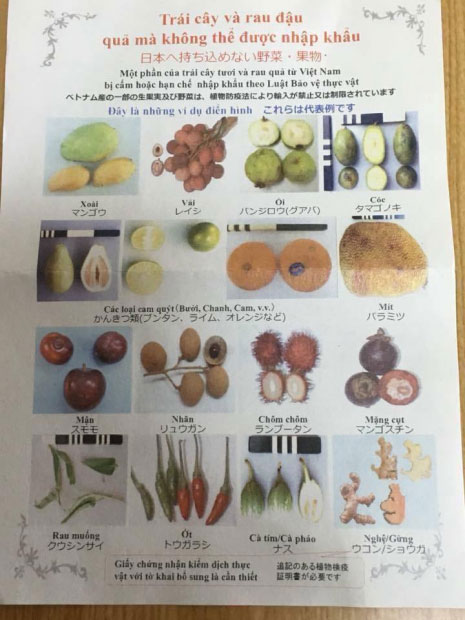 Nữ sinh bị bắt vì mang 360 quả trứng vịt lộn vào Nhật