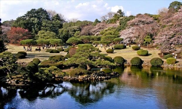 shinjuku-gyoen-tokyo