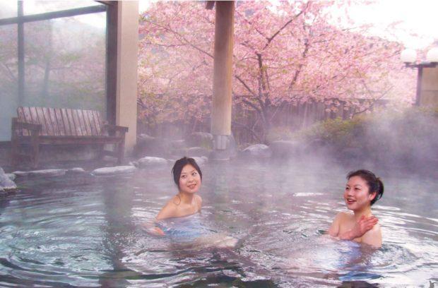 Mùa xuân tắm onsen và ngắm hoa anh đào nở sớm Kawazu