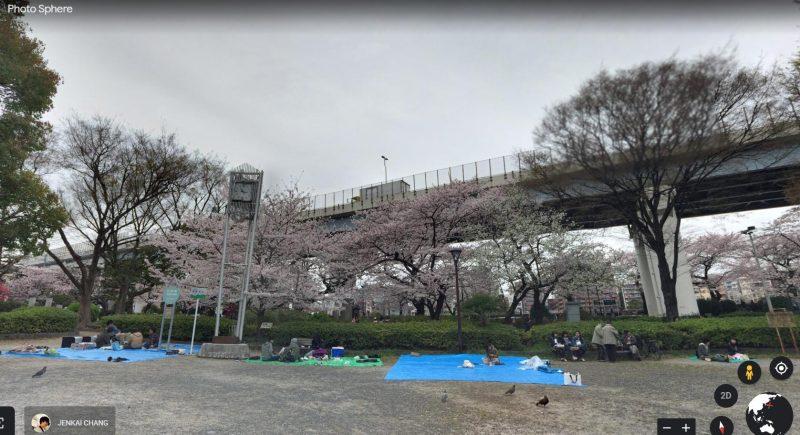 Hoa Anh Đào tại Sumida Park